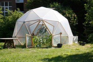 Kugel-Gewächshaus bepflanzt im Mai